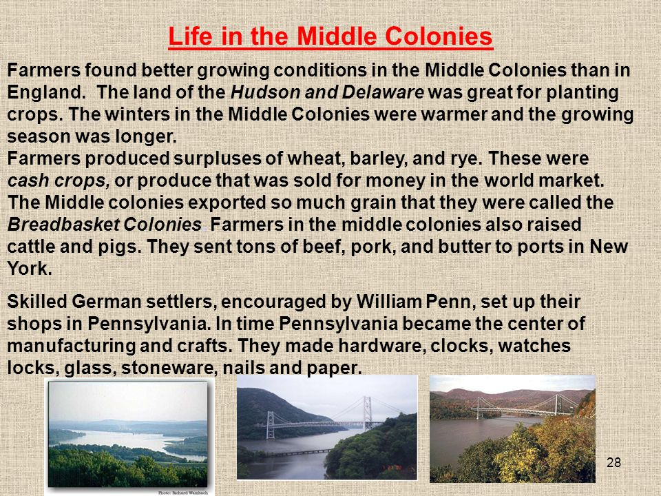 28 Farmers produced surpluses of wheat, barley, and rye.