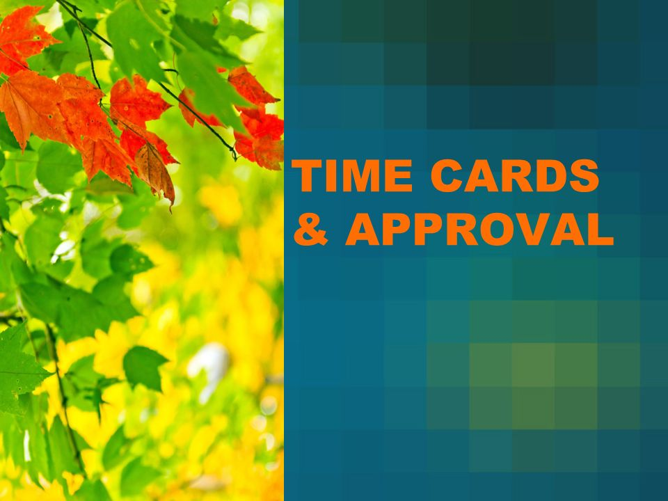 how to do time cards