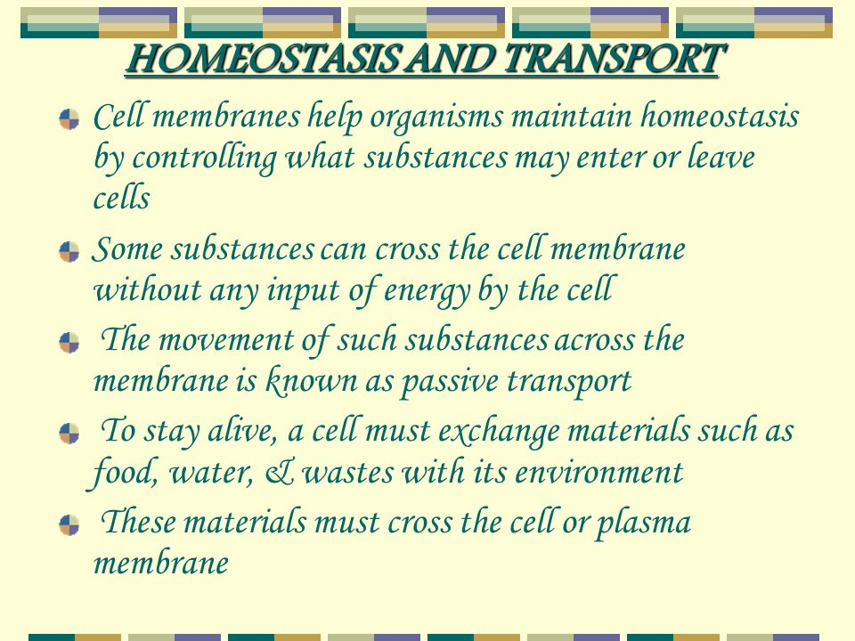 HOMEOSTASIS AND TRANSPORT Cell membranes help organisms maintain homeostasis by controlling what substances may enter or leave cells Some substances can cross the cell membrane without any input of energy by the cell The movement of such substances across the membrane is known as passive transport To stay alive, a cell must exchange materials such as food, water, & wastes with its environment These materials must cross the cell or plasma membrane