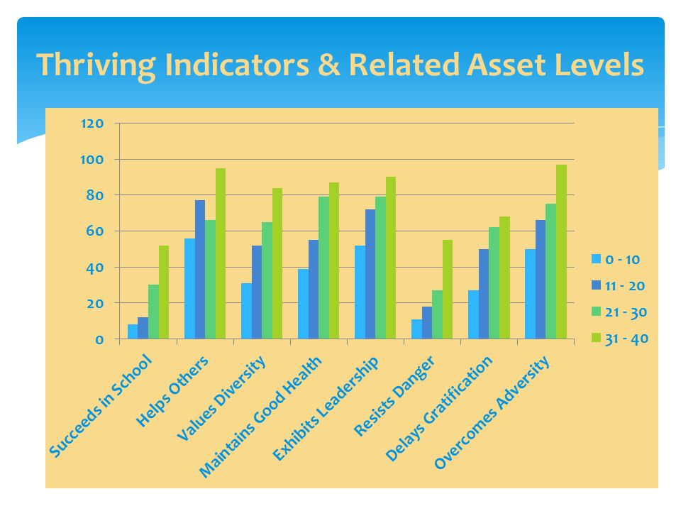Thriving Indicators & Related Asset Levels