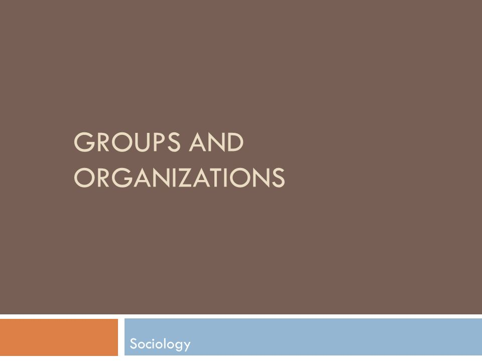 GROUPS AND ORGANIZATIONS Sociology