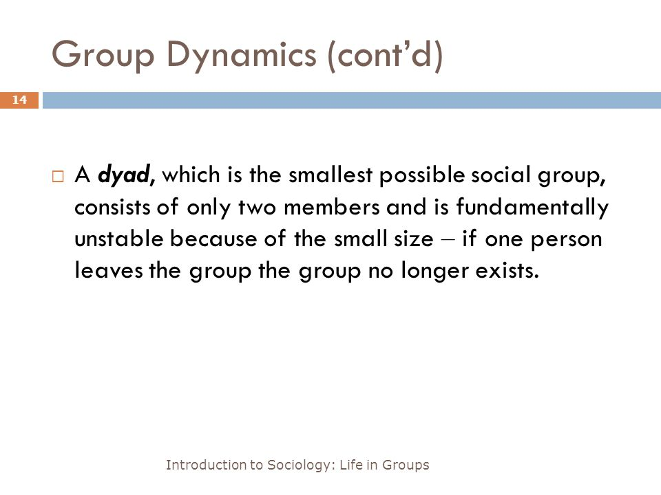 Group Dynamics (cont'd) Introduction to Sociology: Life in Groups 14  A dyad, which is the smallest possible social group, consists of only two members and is fundamentally unstable because of the small size – if one person leaves the group the group no longer exists.