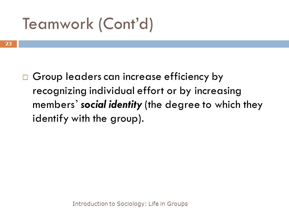 Teamwork (Cont'd) Introduction to Sociology: Life in Groups 23  Group leaders can increase efficiency by recognizing individual effort or by increasing members ' social identity (the degree to which they identify with the group).