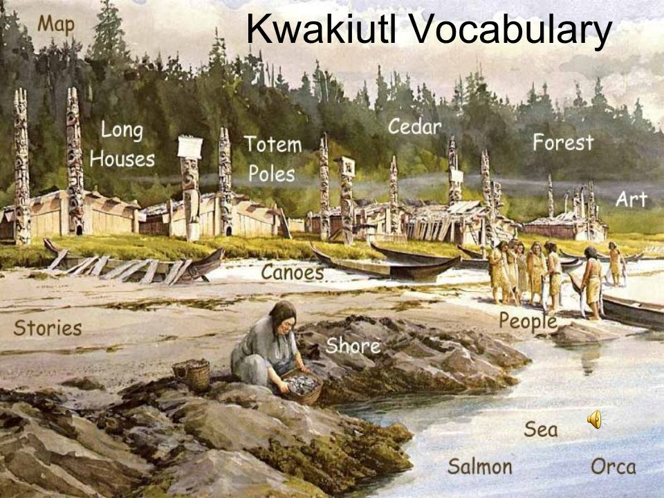 a history of the kwakiutl an american indian tribe