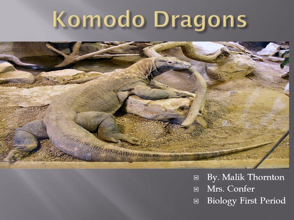  By. Malik Thornton  Mrs. Confer  Biology First Period