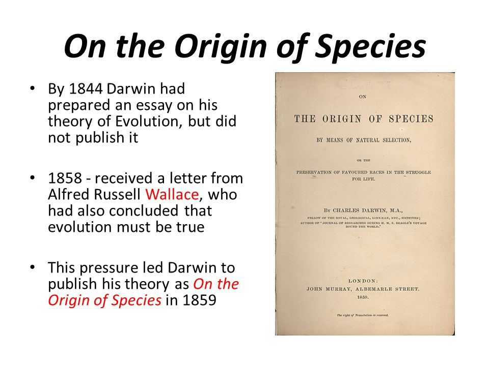 the modern synthesis evolution and genetics charles darwin  11 by 1844 darwin had prepared an essay on his theory of evolution