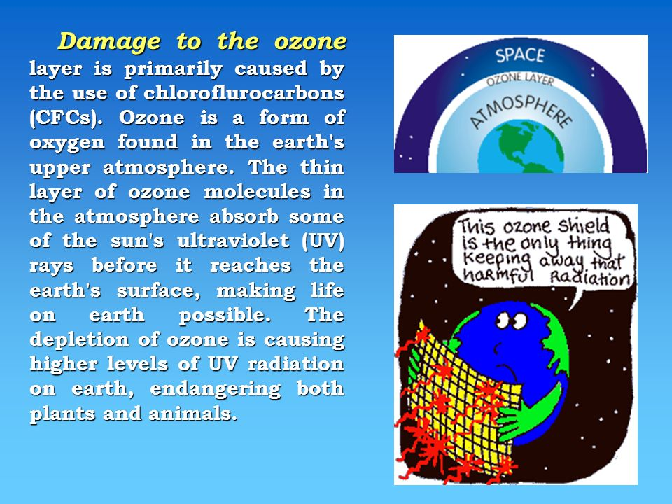 Damage to the ozone layer is primarily caused by the use of chloroflurocarbons (CFCs).
