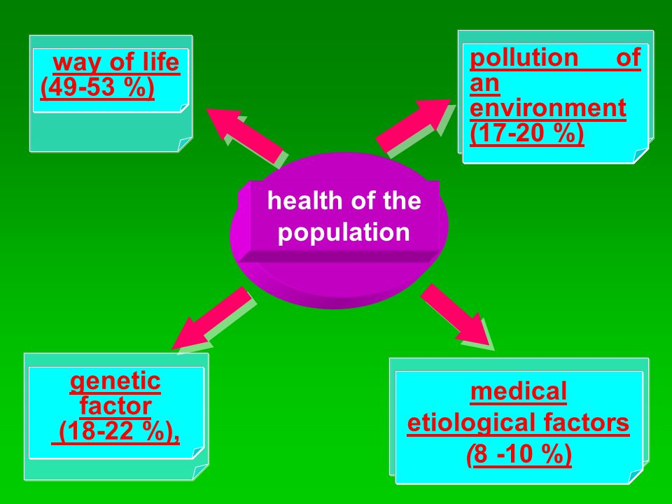 health of the population genetic factor (18-22 %), pollution of an environment (17-20 %) medical etiological factors (8 -10 %) way of life (49-53 %)