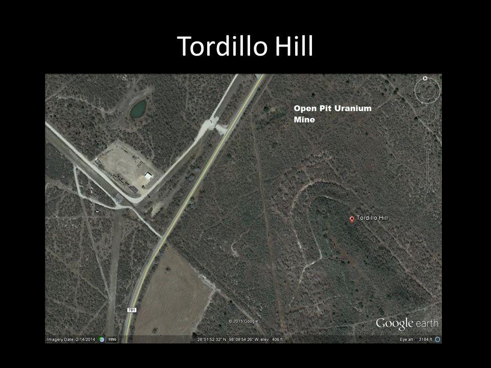 Tordillo Hill