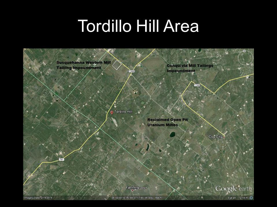 Tordillo Hill Area
