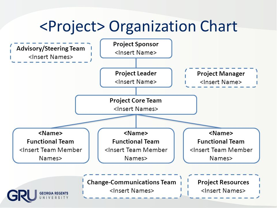 Project Organization Chart Roles  Responsibilities Matrix Add