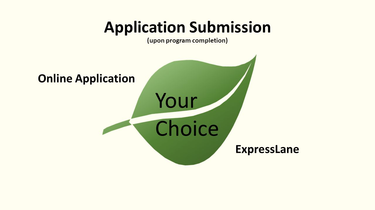 Georgia professional standards commission understanding current 6 application submission upon program completion online application expresslane your choice xflitez Image collections