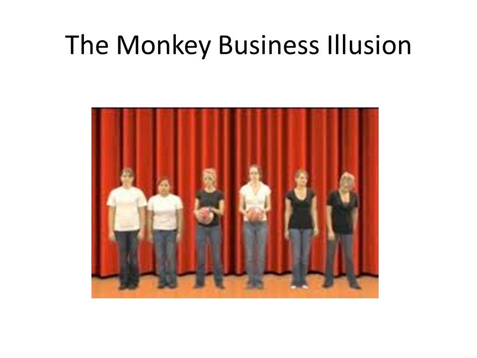 monkey business illusion