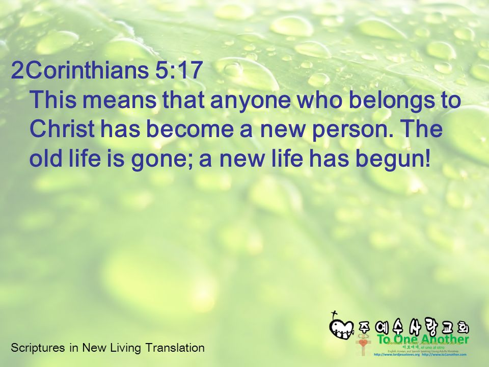 Scriptures In New Living Translation 2Corinthians 5:17 This Means That  Anyone Who Belongs To
