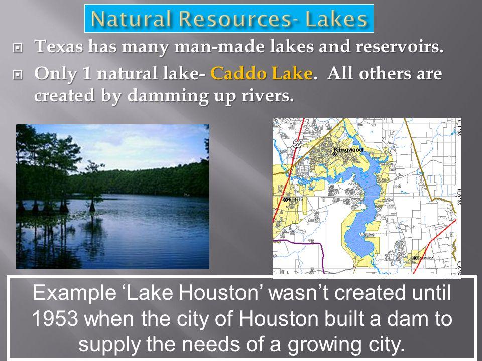  Texas has many man-made lakes and reservoirs.  Only 1 natural lake- Caddo Lake.