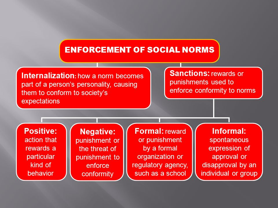 What is Social Structure . What are the two major components of social structure.