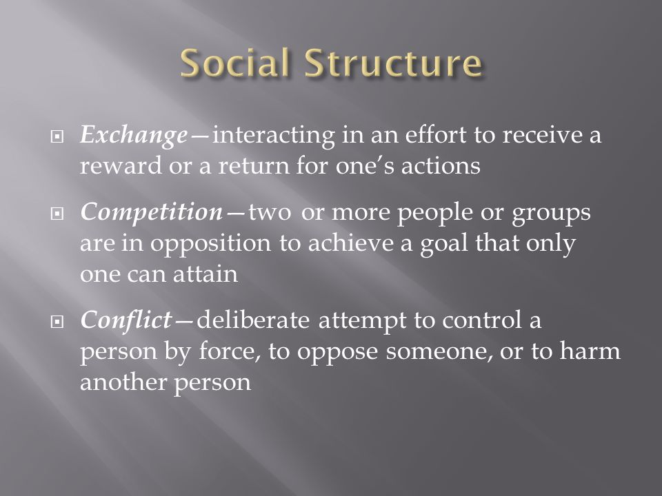  Cooperation —two or more people or groups working together to achieve a goal that will benefit more than one of them  Accommodation —a state of balance between cooperation and conflict  Accommodation, Exchange, and Cooperation — stabilize social structure  Competition and Conflict —can disrupt social structure