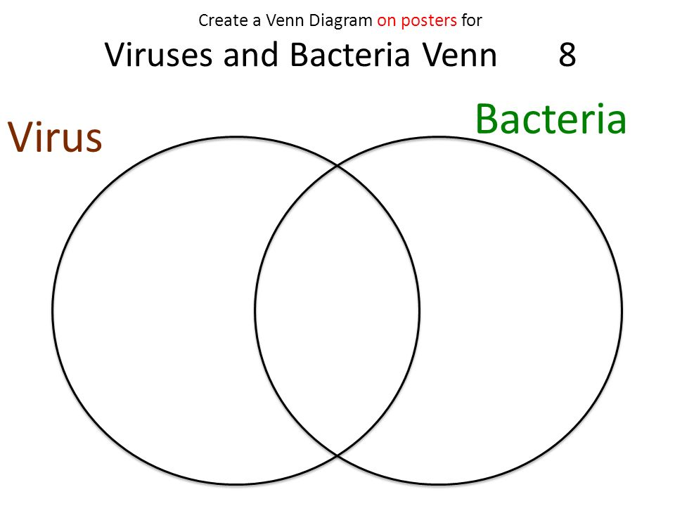 This should appear before final day of bacteria agar plates but we 13 create a venn diagram on posters for viruses and bacteria venn 8 virus bacteria ccuart