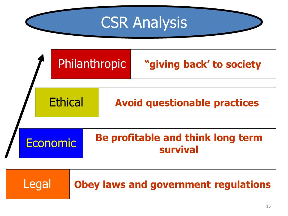 16 Economic Be profitable and think long term survival Legal Philanthropic Ethical giving back' to society Avoid questionable practices Obey laws and government regulations CSR Analysis