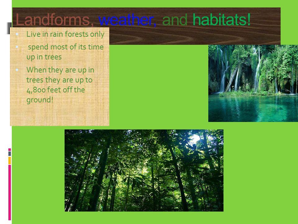 Landforms, weather, and habitats.
