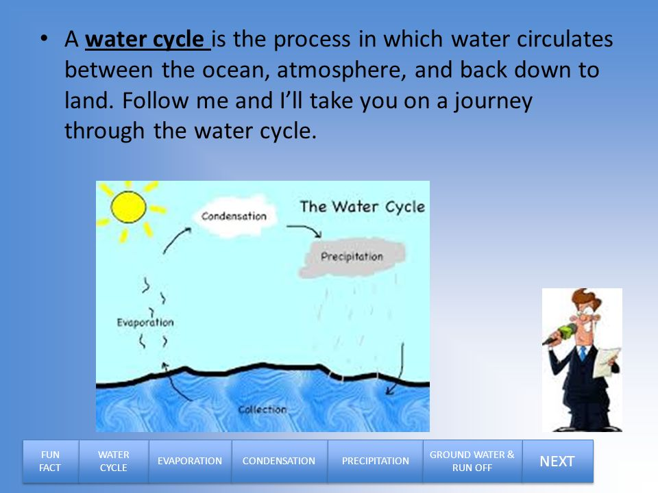 A Water Cycle Is The Process In Which Circulates Between Ocean Atmosphere
