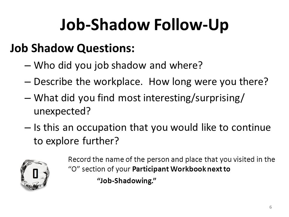 Job Shadowing Essay
