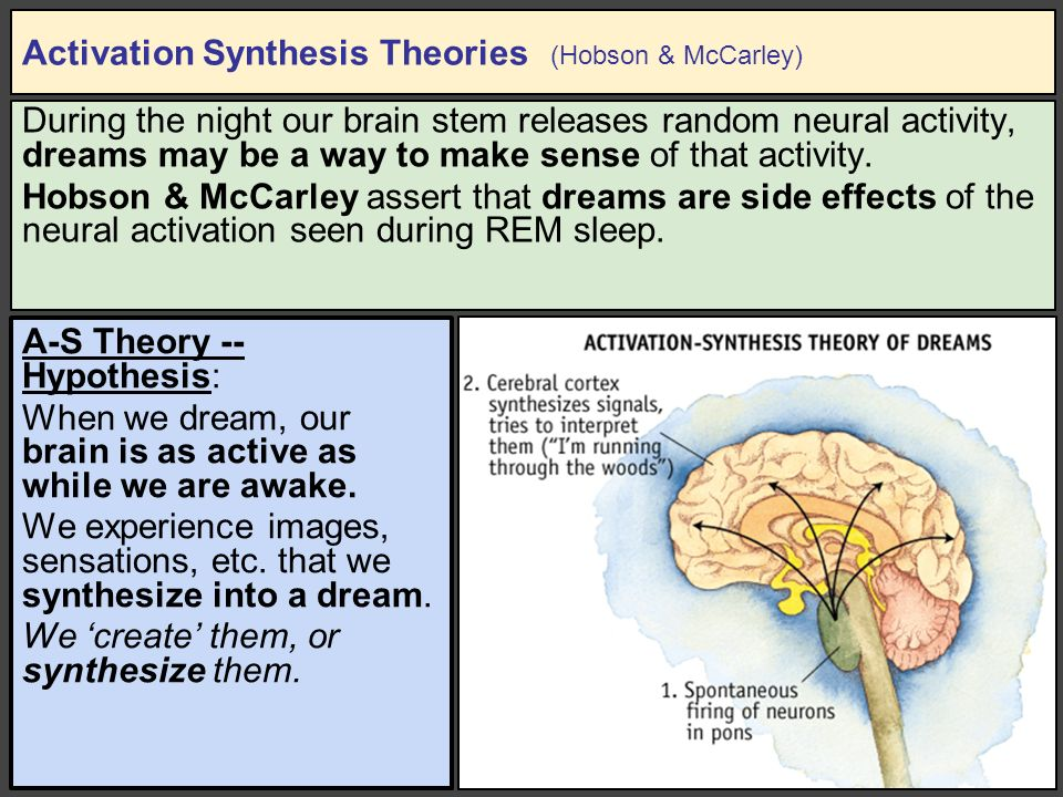 activation synthesis theory examples