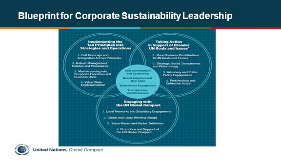 Human rights and the social dimension of the united nations global 3 blueprint for corporate sustainability leadership malvernweather Choice Image