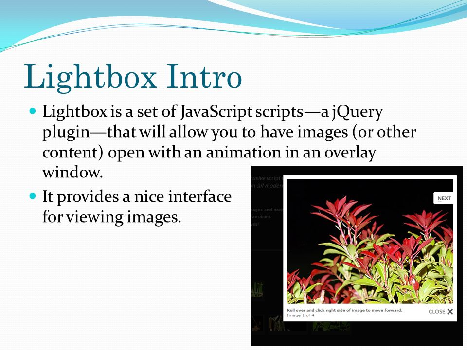 6 Lightbox Intro ...