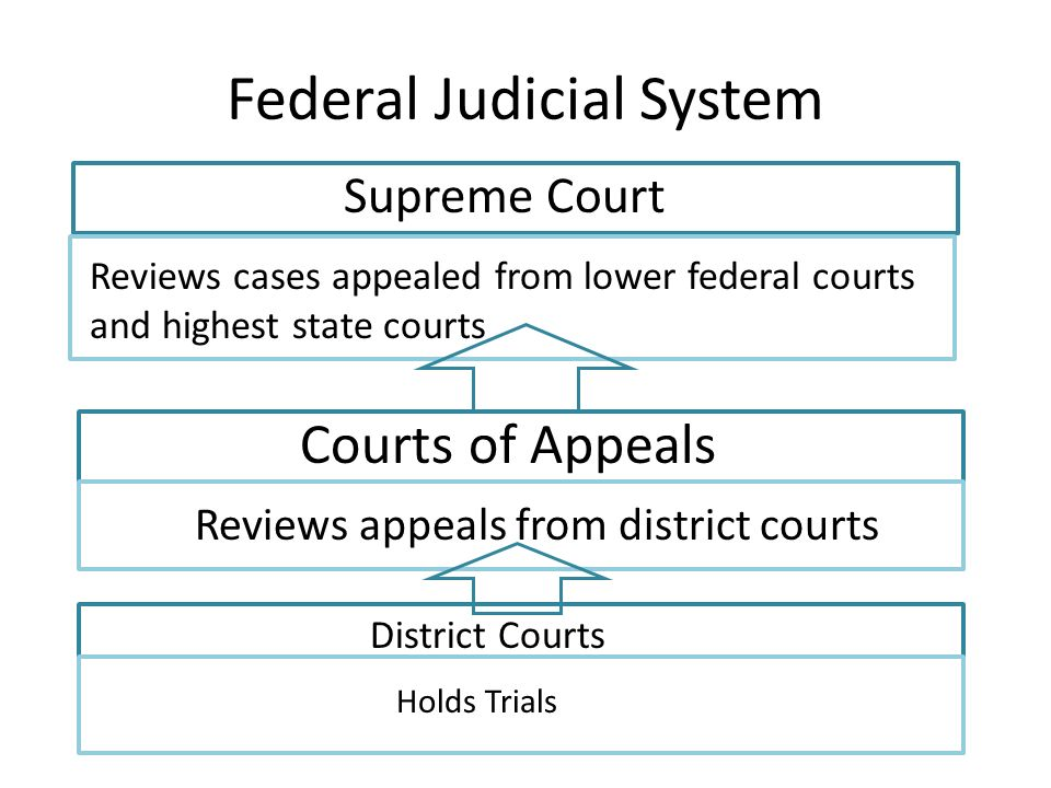 Federal Judicial System Supreme Court Reviews cases appealed from lower federal courts and highest state courts Courts of Appeals RReviewRrRrrrrrrrrrrrrrrrrrrrrrrrrrrrrrrrrrrrrrrrrrrrrrrrrrrrrrrrrrrrrrrrrrrrrrrrrrrrrrrrr rrrrrr Reviews appeals from district courts District Courts Holds Trials