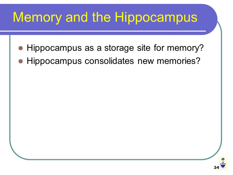 34 Memory and the Hippocampus Hippocampus as a storage site for memory.