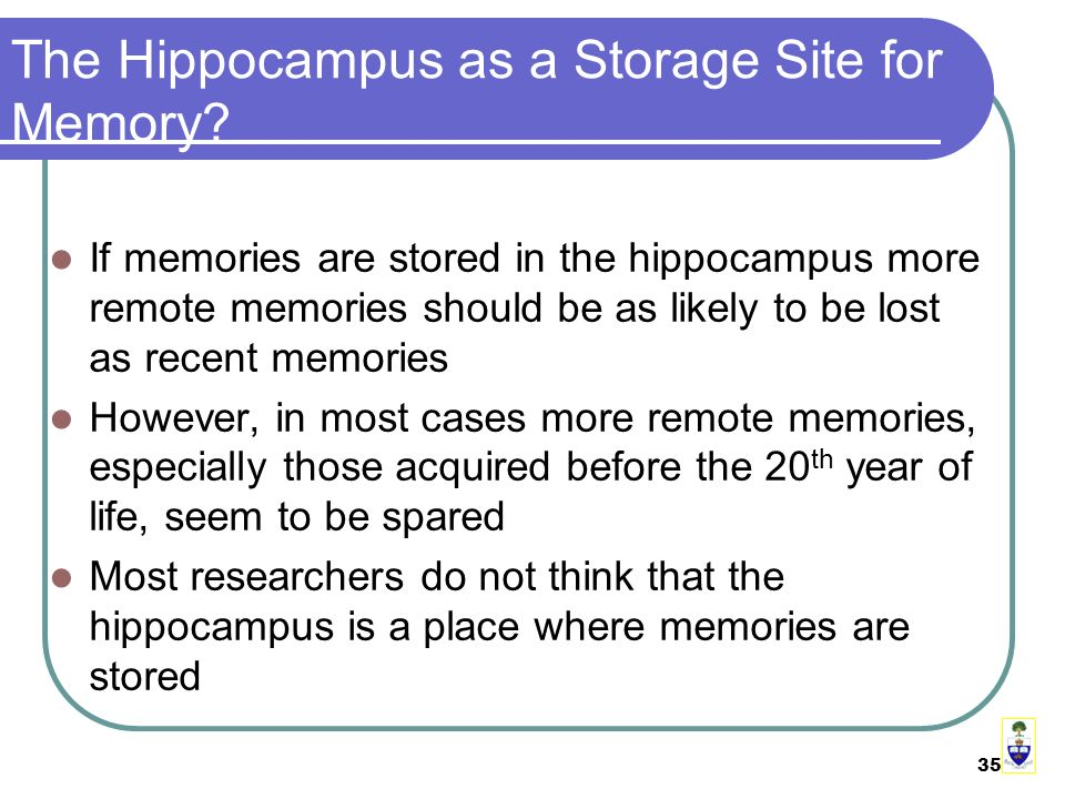 35 The Hippocampus as a Storage Site for Memory.