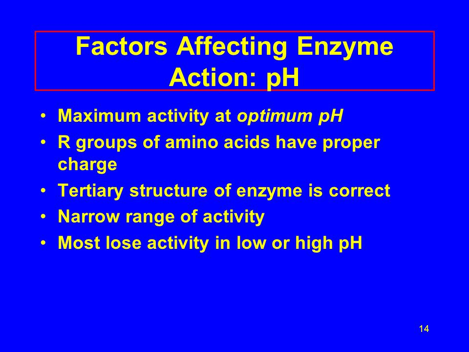 14 Factors Affecting Enzyme Action: pH Maximum activity at optimum pH R groups of amino acids have proper charge Tertiary structure of enzyme is correct Narrow range of activity Most lose activity in low or high pH