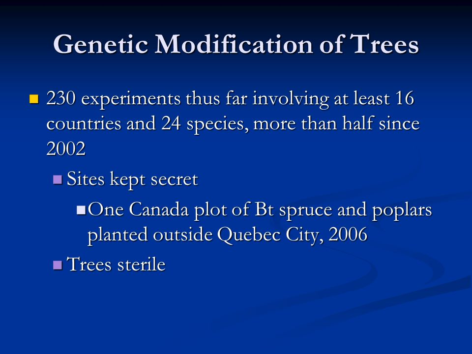 Genetic Modification of Trees 230 experiments thus far involving at least 16 countries and 24 species, more than half since 2002 230 experiments thus far involving at least 16 countries and 24 species, more than half since 2002 Sites kept secret Sites kept secret One Canada plot of Bt spruce and poplars planted outside Quebec City, 2006 One Canada plot of Bt spruce and poplars planted outside Quebec City, 2006 Trees sterile Trees sterile