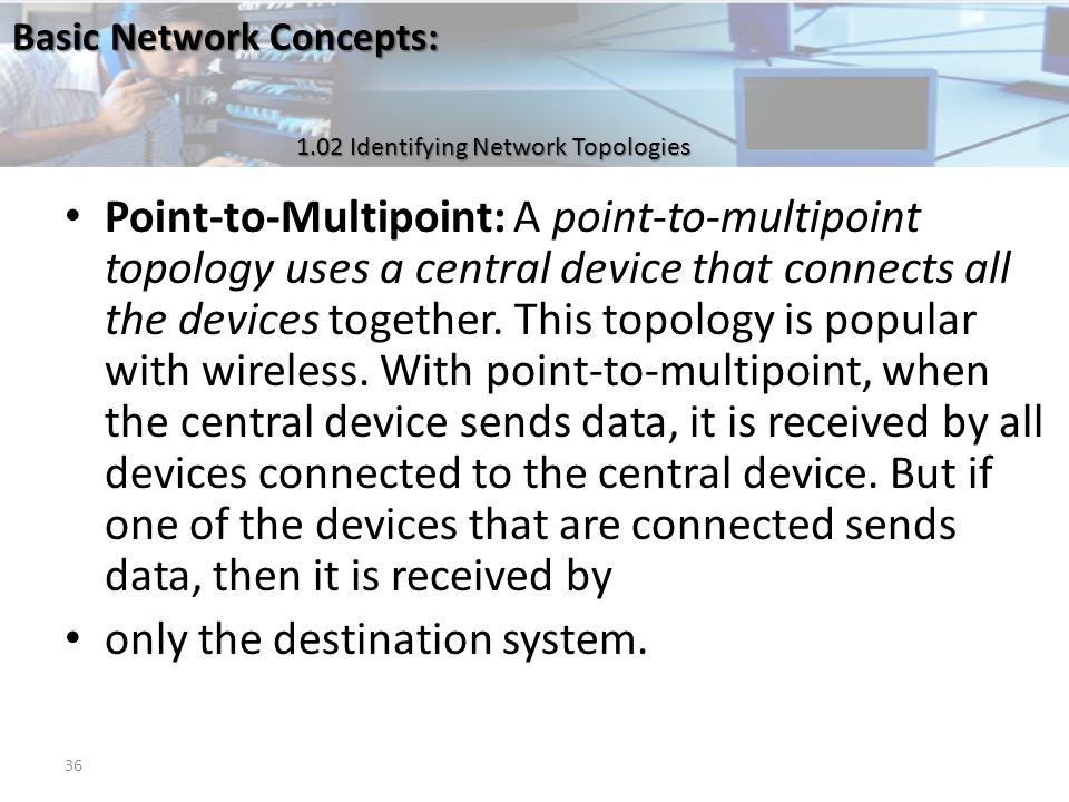 Basic network concepts the server in a server based network may basic network concepts 102 identifying network topologies point to multipoint a point sciox Choice Image