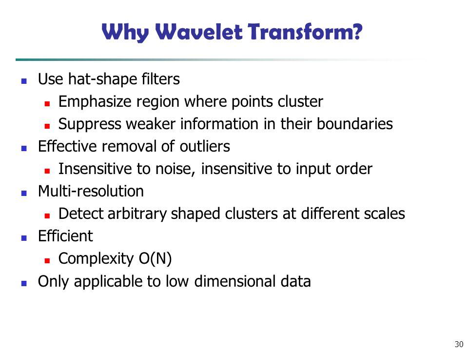 30 Why Wavelet Transform.