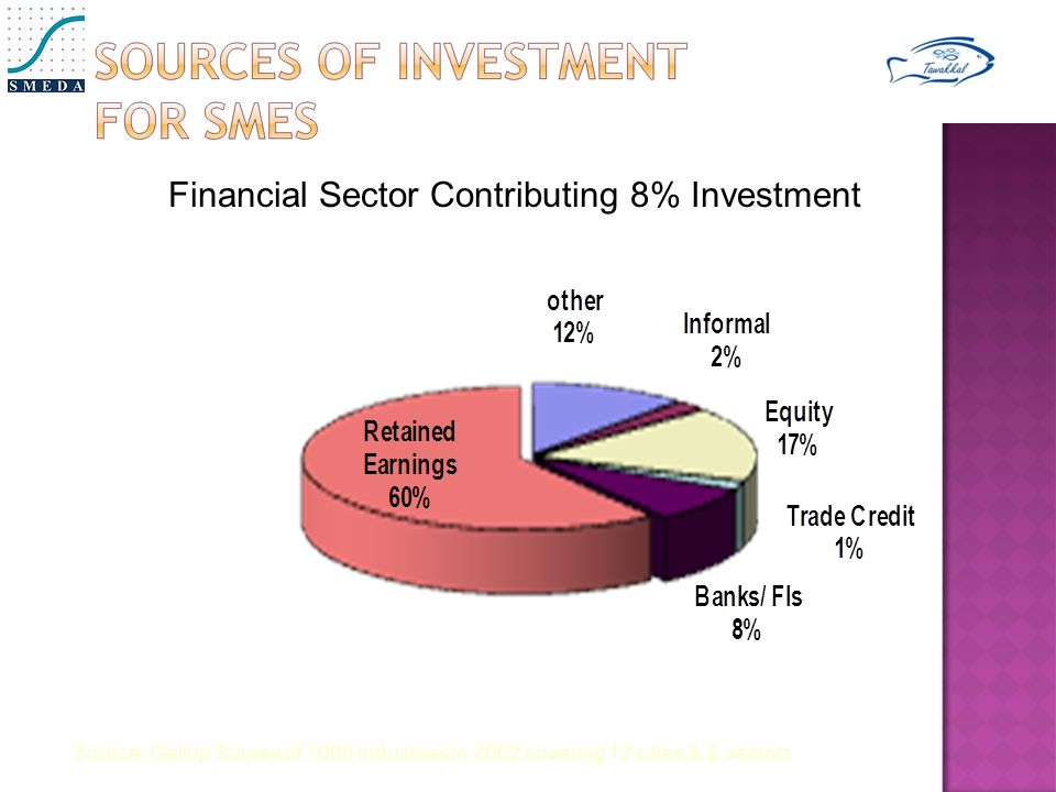 Financial Sector Contributing 8% Investment Source: Gallup Survey of 1000 Industries in 2002 covering 12 cities & 8 sectors