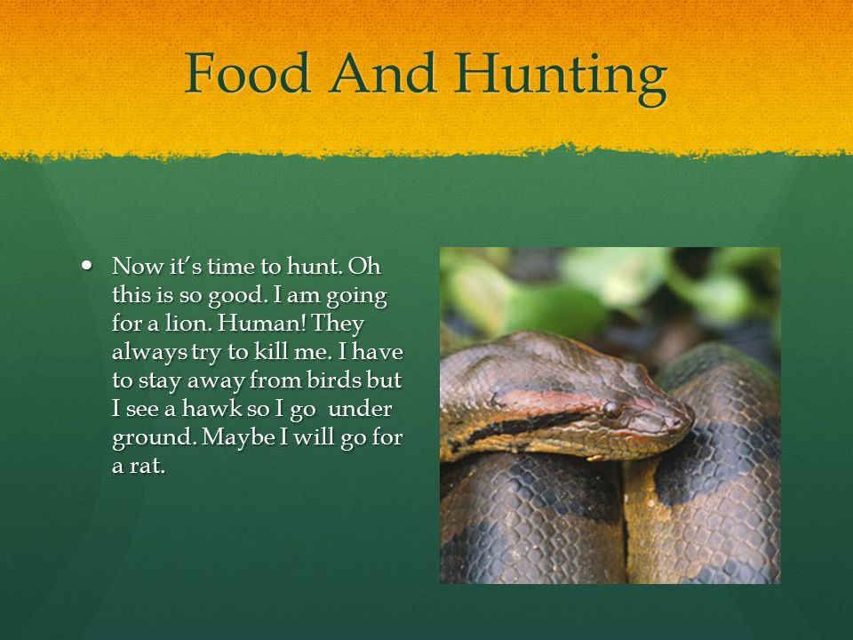 Food And Hunting Now it's time to hunt. Oh this is so good.