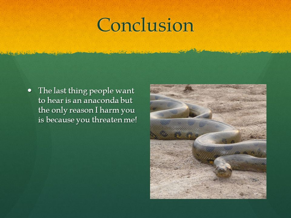 Conclusion The last thing people want to hear is an anaconda but the only reason I harm you is because you threaten me!