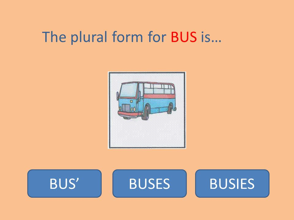The plural form for CAKE is… CAKESCAKIESCAKE'S. - ppt download