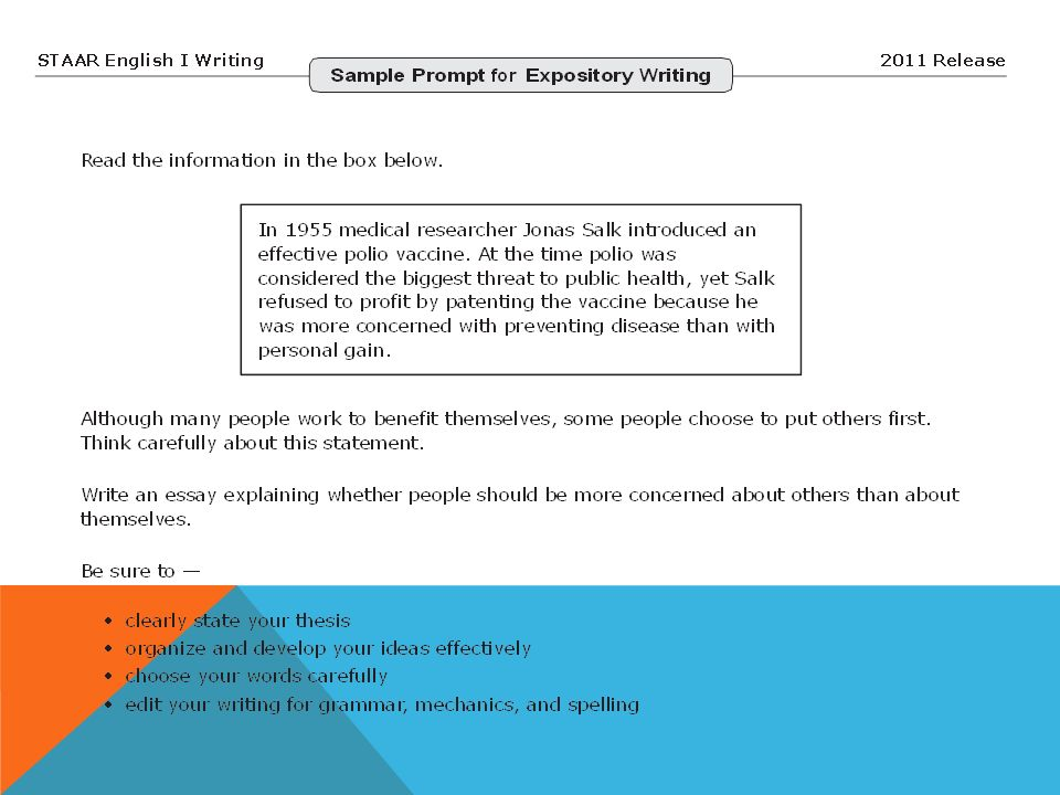 persuasive essay proeuthanasia