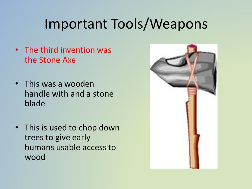 Important Tools/Weapons The third invention was the Stone Axe This was a wooden handle with and a stone blade This is used to chop down trees to give early humans usable access to wood