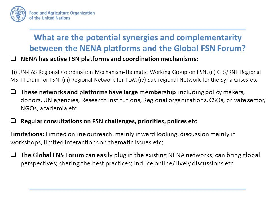 What are the potential synergies and complementarity between the NENA platforms and the Global FSN Forum.