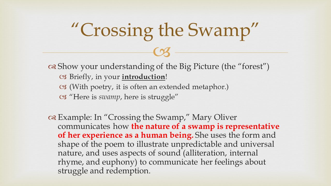 crossing swamp mary oliver