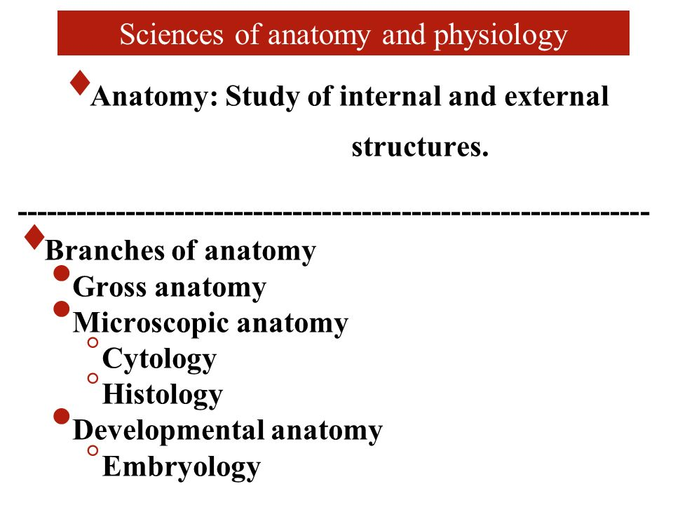 Ungewöhnlich Chapter 1 Introduction To Anatomy And Physiology Test ...