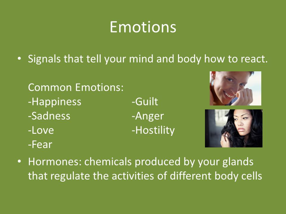 Emotions Signals that tell your mind and body how to react.