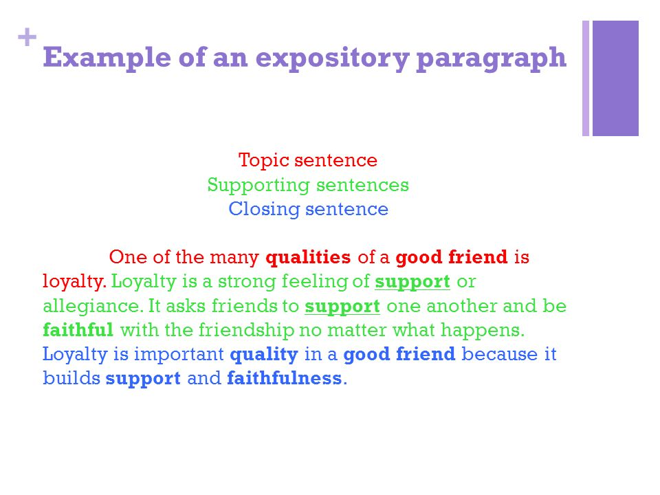 academic writing from sentences to paragraphs paragraphs to essays