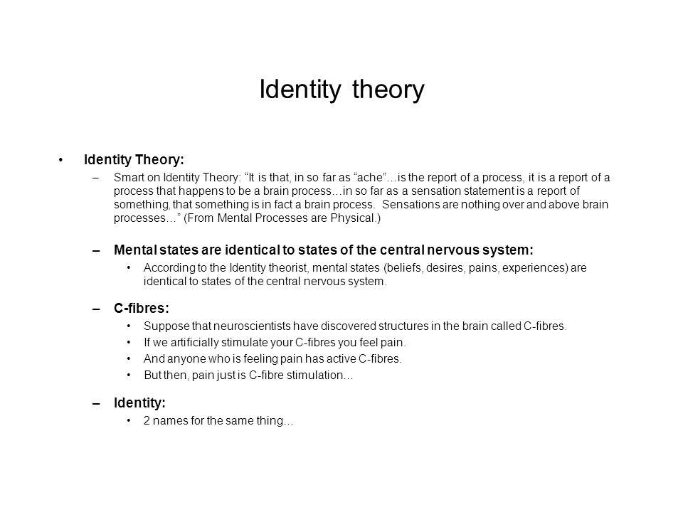 essays on identity theory