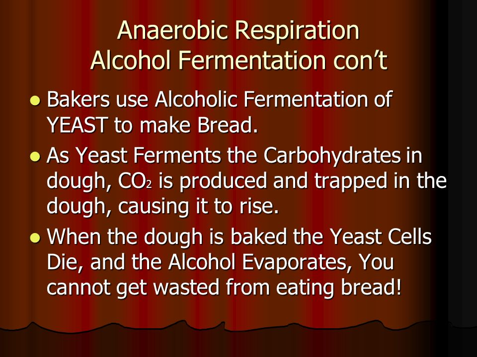 What organisms use anaerobic respiration?