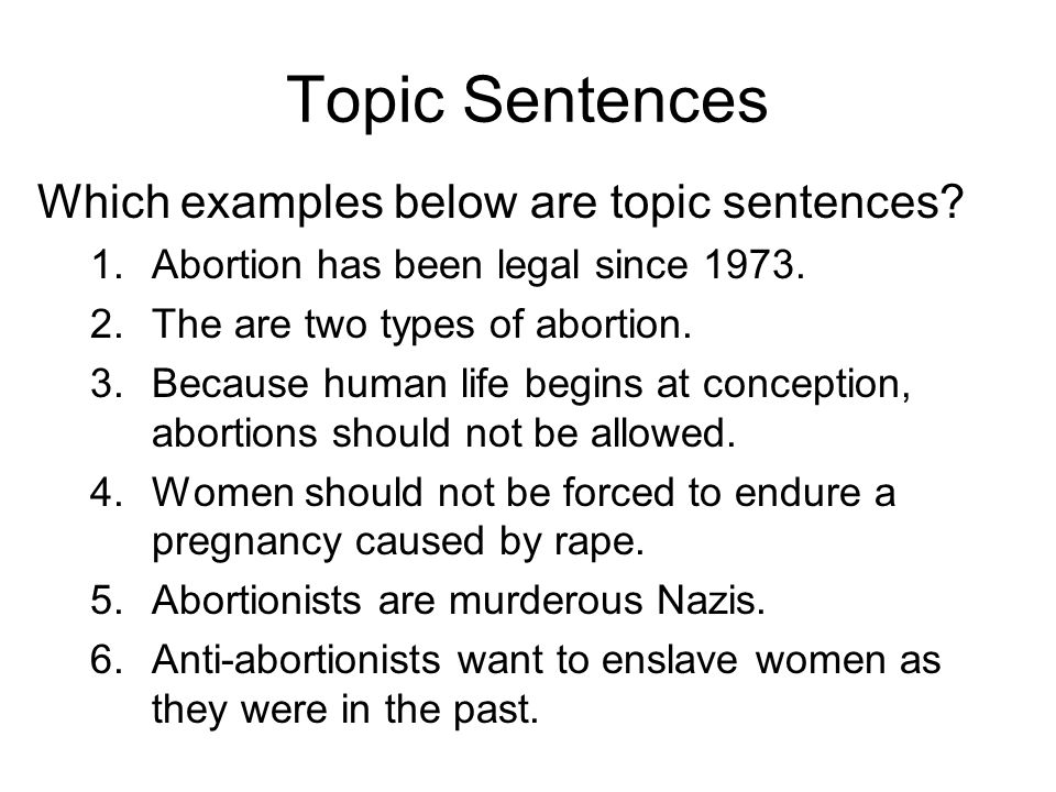 Argumentative Essay On Abortion Examples